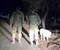 """חיפושים אחרי שרידי רקטה - רקטה שוגרה מעזה; צה""""ל ירה לעבר חמאס"""