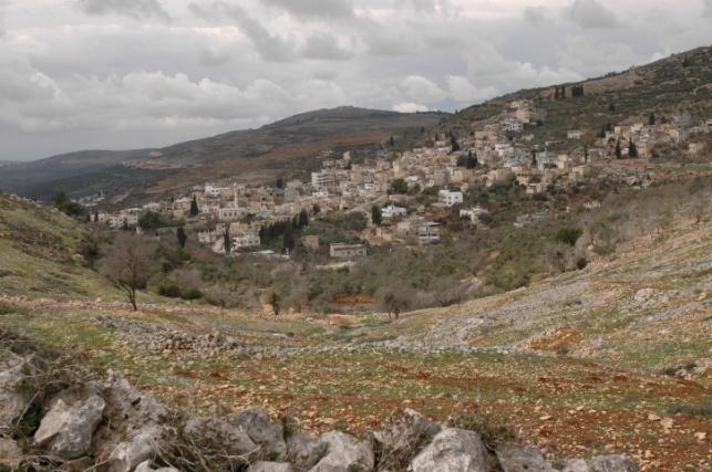 הכפר בורין