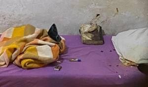 מיטתו של פליישמן