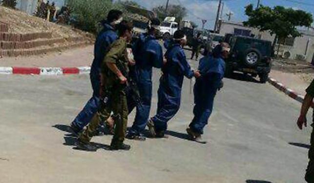 מחבלי חמאס שנעצרו בצוק איתן