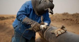 באילו מדינות עובדים הכי קשה?