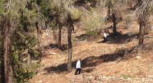 באמצע היער: המטיילים מצאו עצמות אדם