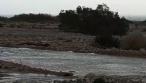 צפו בווידאו: זרימת הגשמים בנחל צאלים