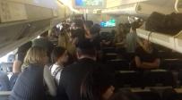 מתוך הטיסה