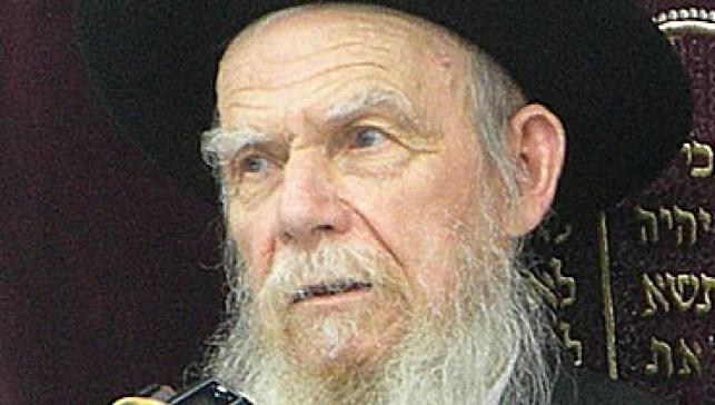 הגאון רבי גרשון אדלשטיין (צילום: דוד כהן)