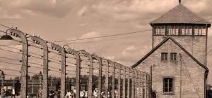 """מה ענה הרבי מחב""""ד לניצול השואה הכאוב?"""