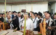 האחים אהרן ויונתן רזאל בהלל דחול המועד