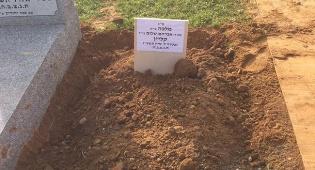 """קברה הטרי של מלכה קליין ע""""ה - בשבועיים: שלושה חרדים לשעבר נפטרו"""
