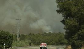 גל השריפות בעיצומו: שוקלים סיוע בינלאומי