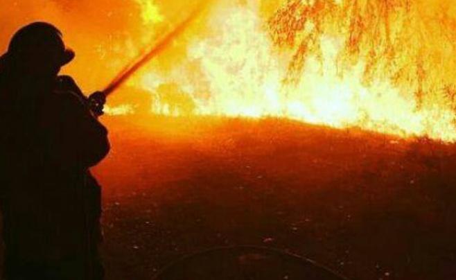 ממצלמת הכבאי: כך נראית הלחימה באש