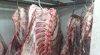 הבשר שנתפס - סוכלה הברחת ענק של בשר כבש ובשר עוף