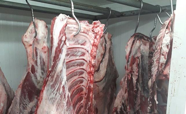 הבשר שנתפס