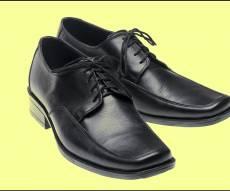 נעלי כאט.