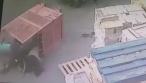 הסיע נערות במלגזה, גרם לפציעתן ונעצר