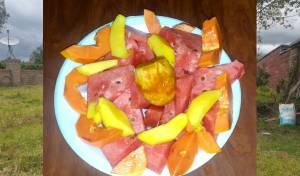 """איזה פירות וירקות מותר לאכול בחו""""ל? • צפו"""