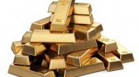 מטילי זהב, אילוסטרציה - ה-FBI בחיפושים אחר מטמון הזהב שהוטמן