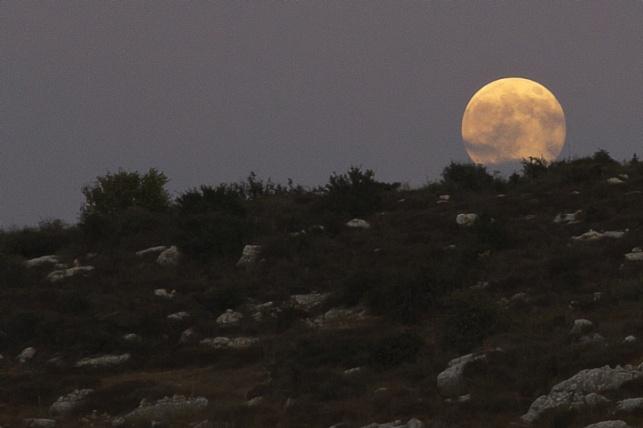 צפו: הירח התקרב והאיר בעוצמה