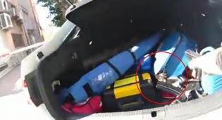 השוטר חילץ גור חתולים מתוך גלגלי הרכב