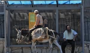 """תחב""""צ בירושלים. אילוסטרציה - תחב""""צ בחגים: לא סגורים אם אתם בתחנה הנכונה?"""
