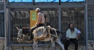 """תחב""""צ בירושלים. אילוסטרציה"""