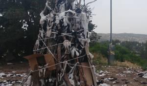 למרות השרב והסכנה: מדורות ליד עצים
