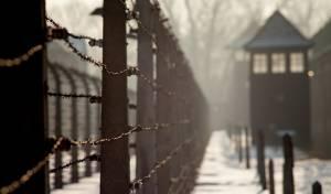 גדרות אושוויץ