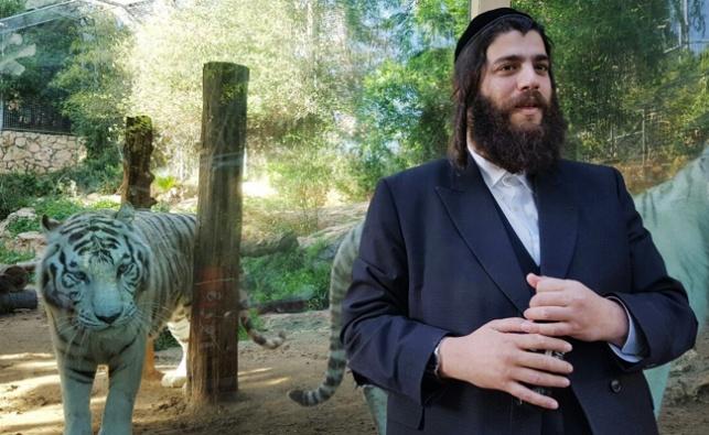פרוש בגן החיות בחיפה, היום