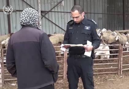 המשטרה פעלה נגד עבירות צער בעלי חיים