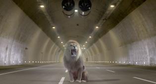 פתיחת המנהרות: כביש 1 יחסם לתנועה