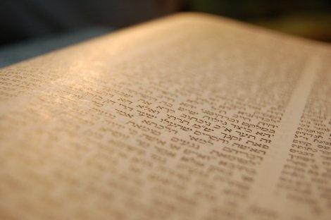 """הדף היומי: מסכת סנהדרין דף ע""""ח יום שני י""""ב בתשרי"""
