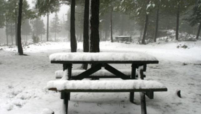 שלג (צילום: פלאש 90)