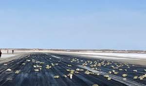 סמוך לסיביר: כמויות ענק של זהב ויהלומים נשפכו ממטוס