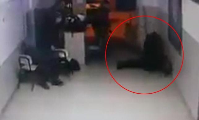 צפו: רגע הירי לעבר השוטר הפלסטיני שמת