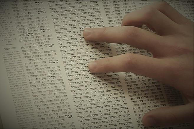 """הדף היומי: מסכת חולין דפים ל""""ח-ל""""ט יום שישי ז""""ך בטבת"""