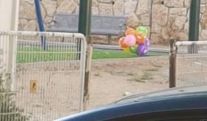 צרור הבלונים בגינה