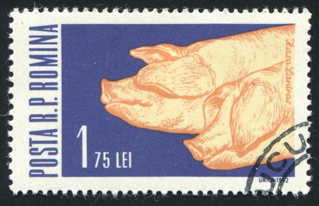 בול רומני שהונפק ב-1962 לכבוד החזירים