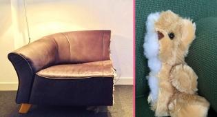הספה והדובי חתוכים בדיוק מרהיב