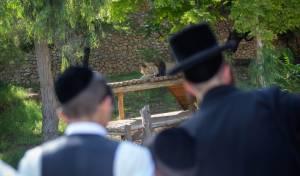 בין הזמנים בירושלים. אילוסטרציה