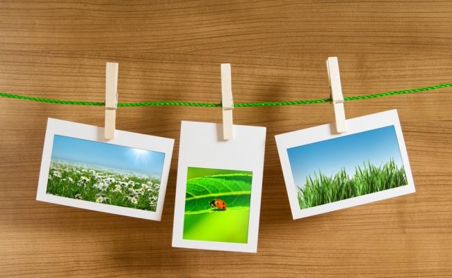 אלבום תמונות. WOW. אילוסטרציה - אלבום תמונות מושלם: קבלו 4 עצות מעשיות