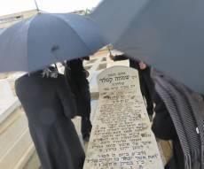 מאבק 'הפלג' הגיע לקברו של המרא דאתרא