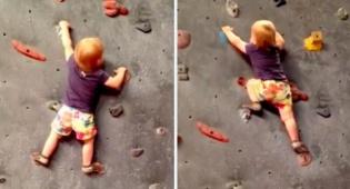 עוד לא בת שנתיים וכבר מטפסת מקצועית. לאלי פארמר - צפו: מטפסת אקסטרים בת שנתיים