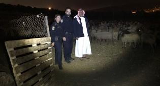 השוטרים ובעל העדר
