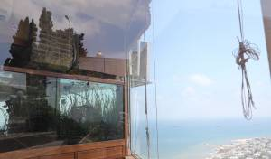 מהרכבל: תיעוד מרהיב של הים והעיר חיפה