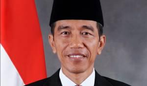 הנשיא האינדונזי, ג'וקו וידודו