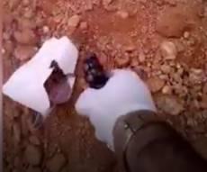 אלמוני תועד יורה בתמונת העבריין שחוסל
