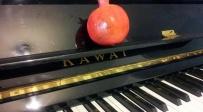"""פסנתר לשבת שמות: """"והסנה איננו אוכל"""""""