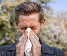 כך תנצחו אלרגיה אביבית בעזרת פעולה פשוטה