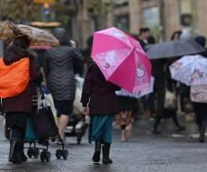 החורף והגשם בעדשת המצלמה של חיים גולדברג