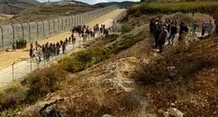 חציית הדרוזים את הגבול לסוריה - נעצרו הדרוזים שפרצו את הגבול הסורי וחצו