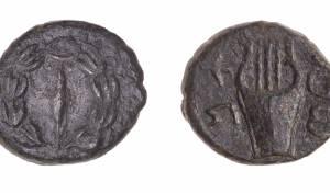 המטבעות שהתגלו